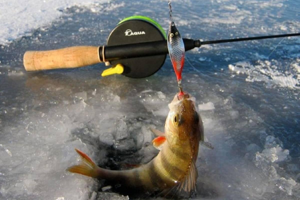 Как грамотно выбрать оснастку зимней удочки для рыбалки на стоячей воде и на течении?