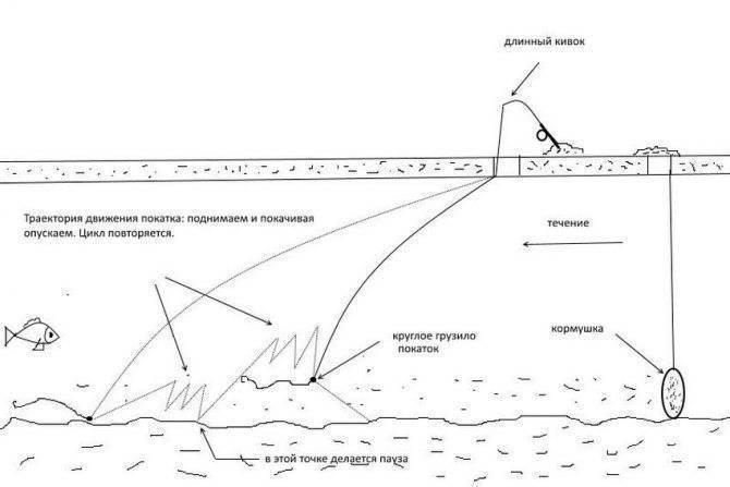 Особенности рыбалки на фидер – правильная стратегия, тактика и техника