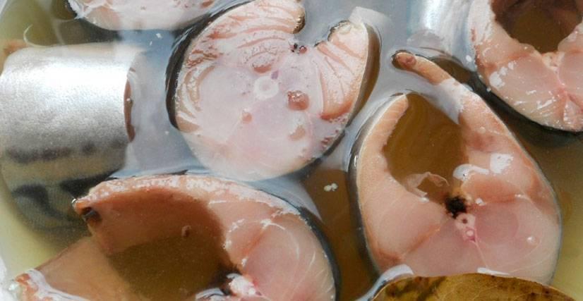 Малосольная маринованная скумбрия – кулинарный рецепт