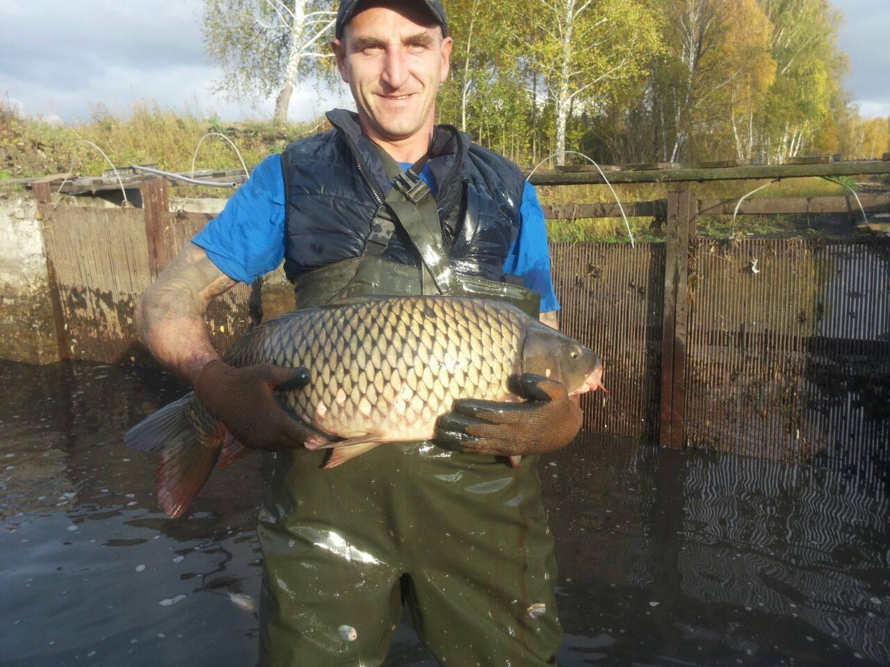 Места для рыбалки в челябинской области – платная и бесплатная рыбалка!