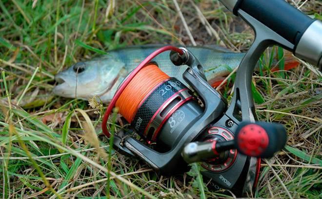 Бесконечный винт в катушке что это - premium-fishing.ru