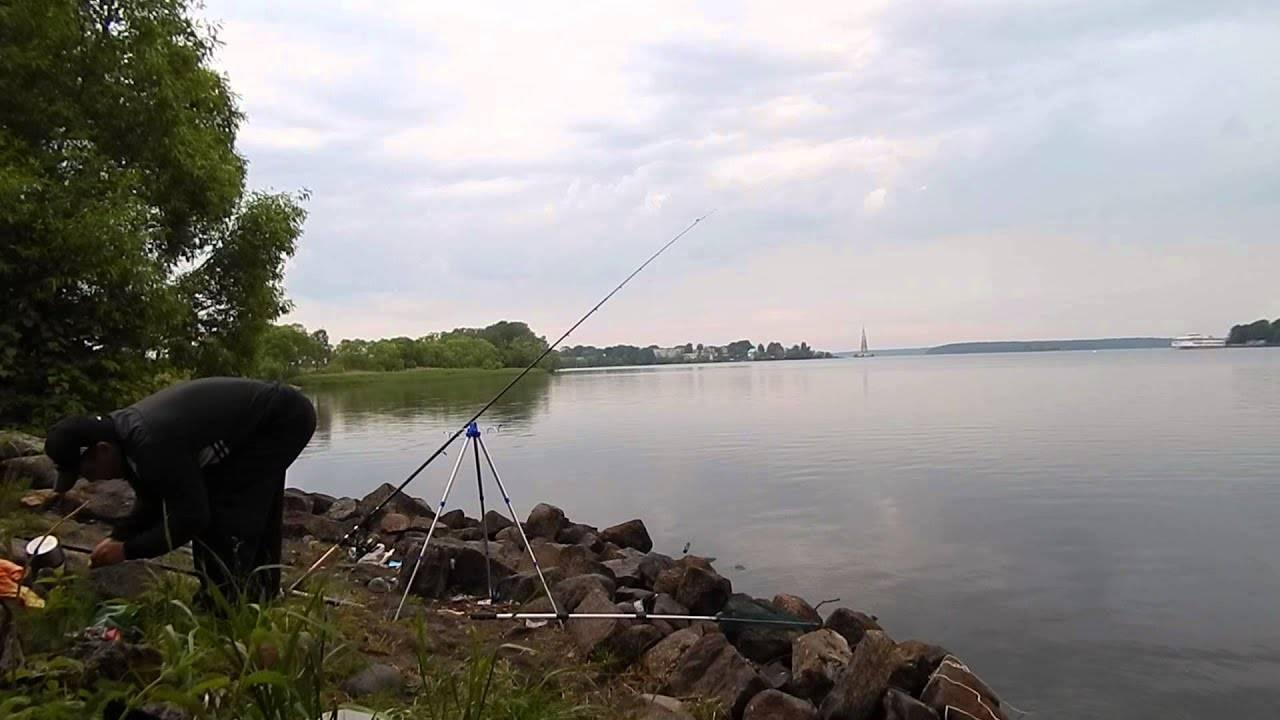 Рыбалка в дубне на волге, лучшие места для ловли в этом районе