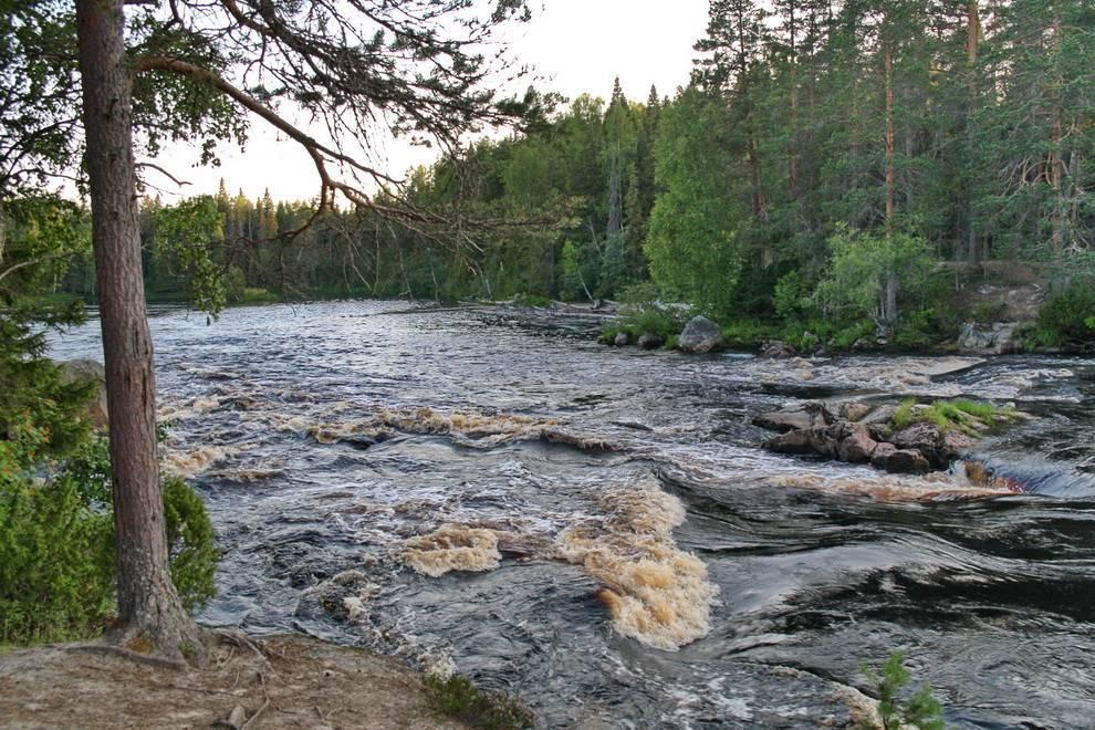 Шуя - река в карелии. описание, сплав, фото