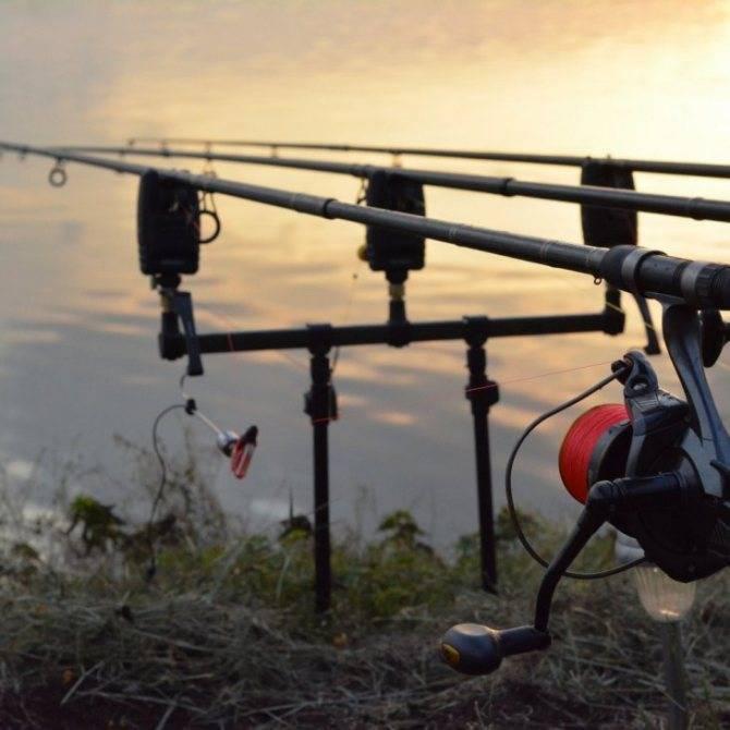 Отличие закидушки от фидерной донки в ходе рыбной ловли