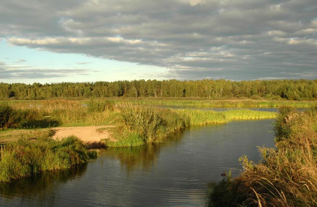 Озеро воже: краткое описание, особенности, фото