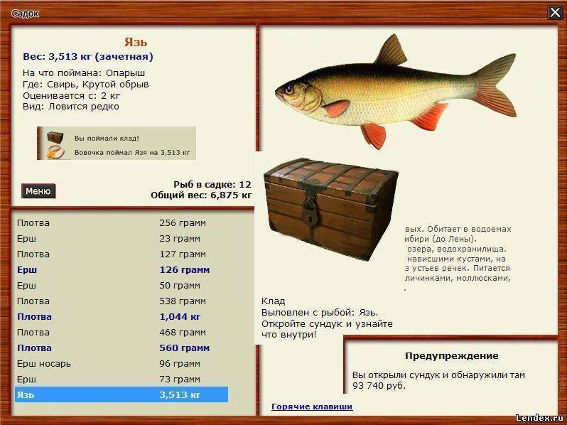 Язь: описание рыбы, места обитания, образ жизни, способы ловли, нерест и приманки