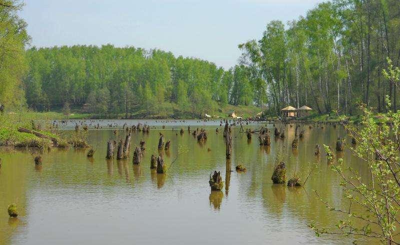 Рыбалка на базе рыболовного клуба «лагуна» в московской области
