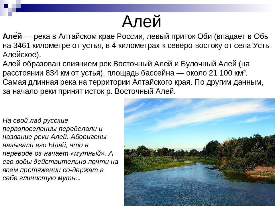 Река Алей Алтайского края: местоположение, фото, описание