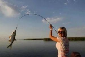 Сонник рыба ловить рыбу на удочку. к чему снится рыба ловить рыбу на удочку видеть во сне - сонник дома солнца