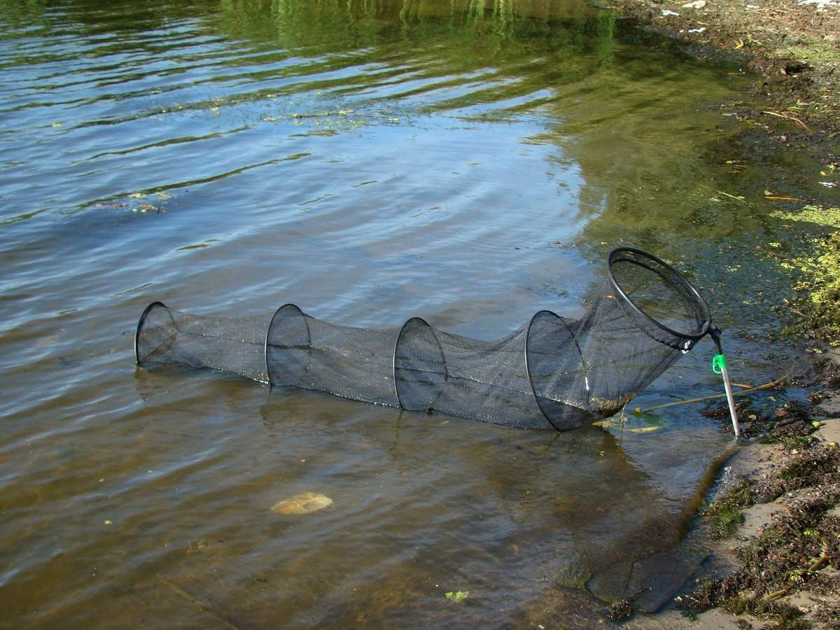 ✅ садок для рыбы своими руками - https://xn----7sbeepoxlghbuicp1mg.xn--p1ai/