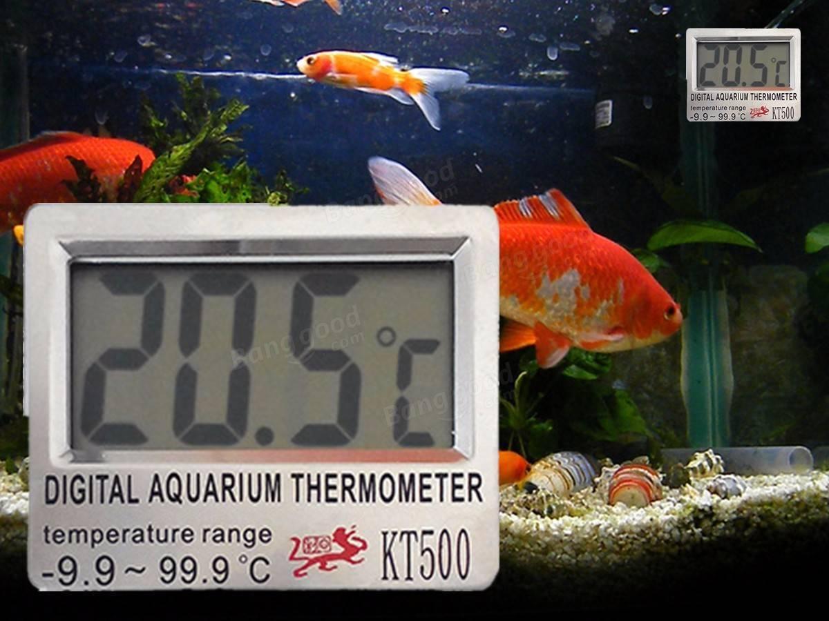 Какая температура должна быть в аквариуме для рыбок?