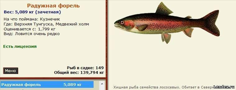 Где ловить форель - осетровые и лососевые