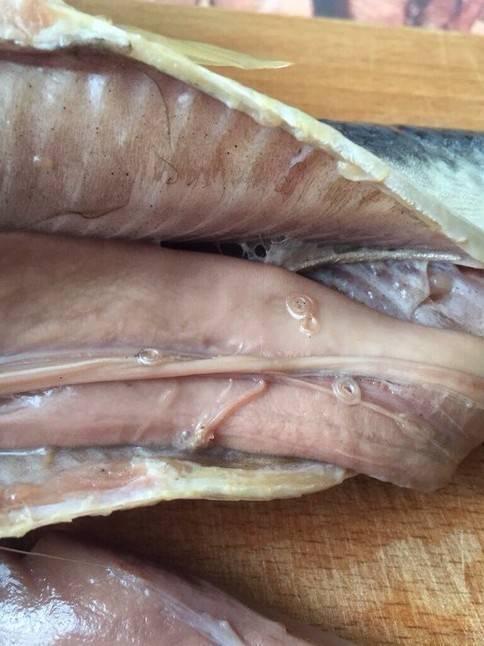 В какой рыбе описторхоз, есть ли в морской, речной, вяленой, как готовить?