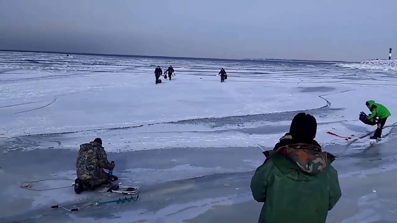 Бердские скалы, новосибирская область. как доехать на машине, карта, маршрут, скала зверобой, фото, видео – туристер.ру