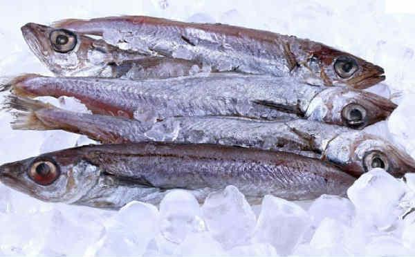 Рыба путассу: польза и вред, описание, рецепт
