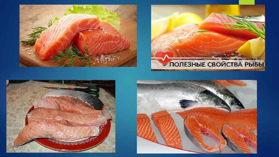 Макрурус польза и вред — как приготовить, описание рыбы и применение в рационе питания (130 фото + видео)