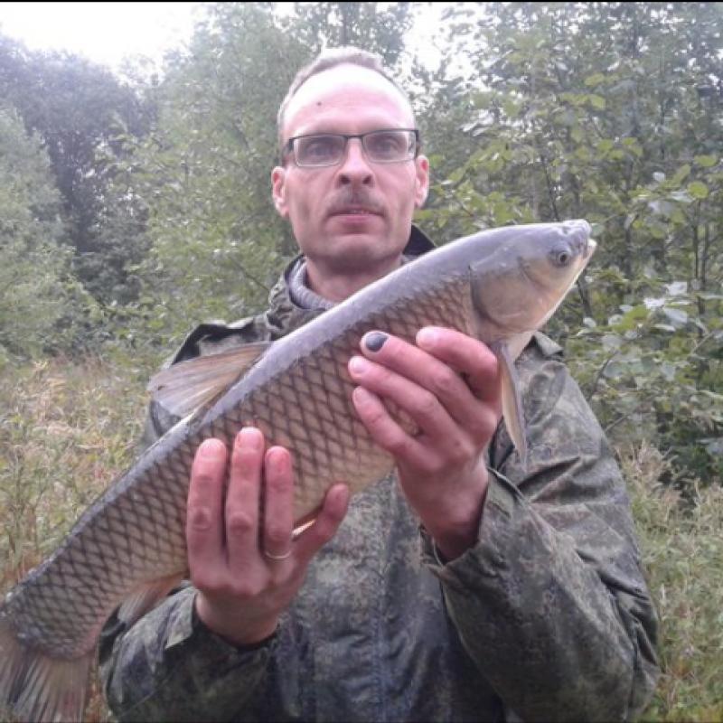 ✅ рыбалка в хомяково сергиево-посадского района, особенности ловли рыбы в деревне - рыбзон.рф