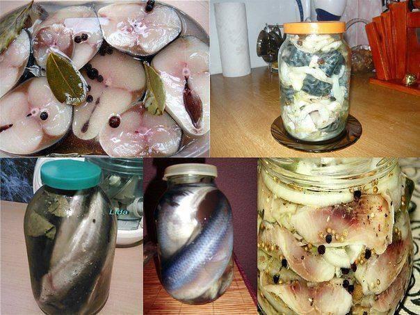 Селедка (более 100 рецептов с фото) - рецепты с фотографиями на поварёнок.ру