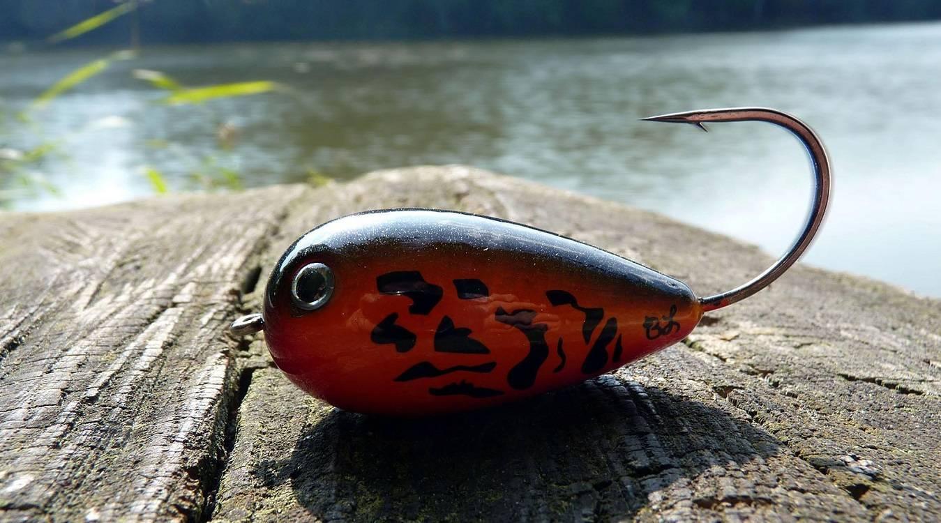 Хорватское яйцо: особенности рыбалки, как сделать своими руками