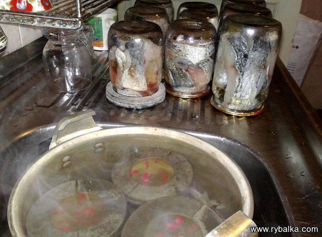 Что делать при богатом улове? готовим домашние рыбные консервы впрок (в масле, в томате, в желе)