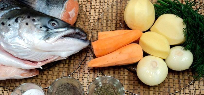 Нежная уха из сeмги – кулинарный рецепт