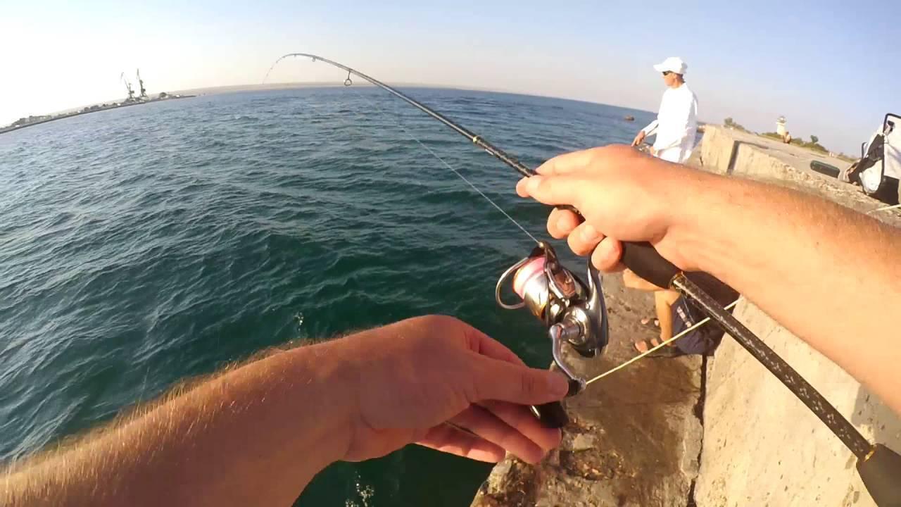 Ловля рыбы в азовском море