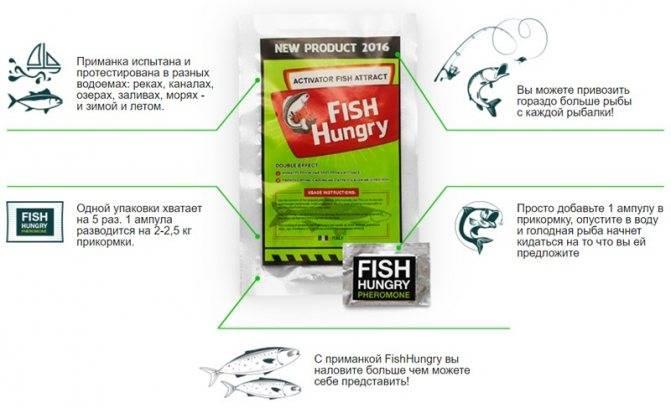 Подбираем ароматизаторы для успешной рыбалки