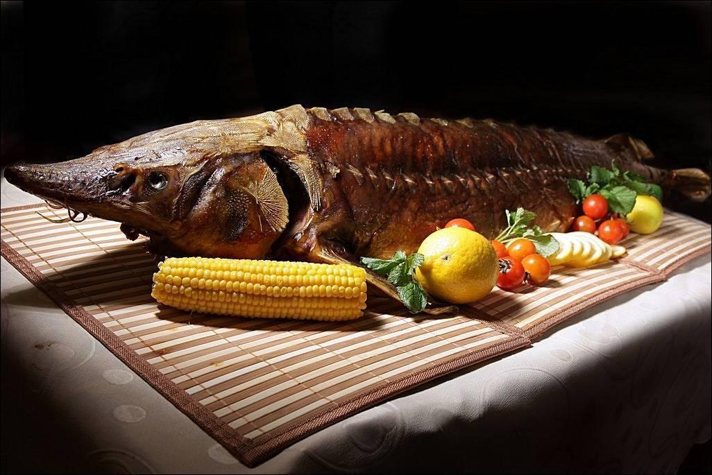 Как очень вкусно приготовить осетра: 6 рецептов царского блюда