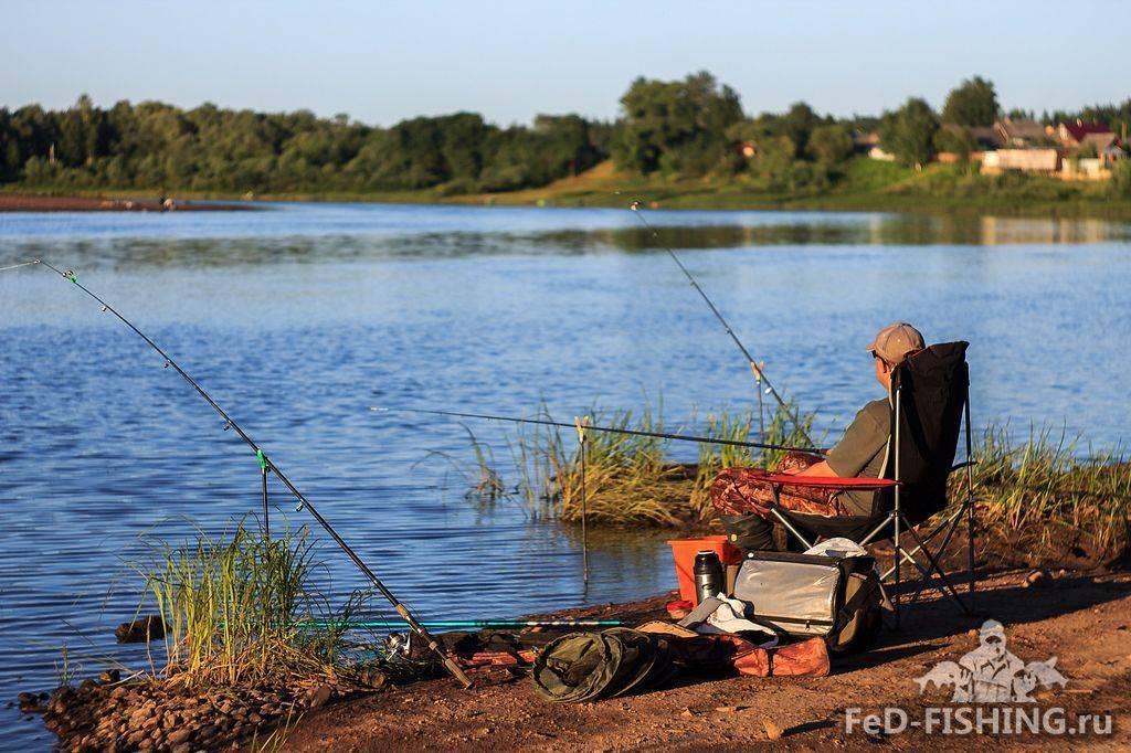 Заказник «карстовые озера», новгородская область. особенности, экскурсии, отзывы, фото, как добраться, отели — туристер.ру