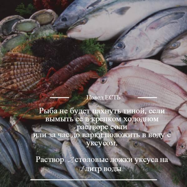 Как убрать запах рыбы. как избавиться от запаха рыбы на кухне