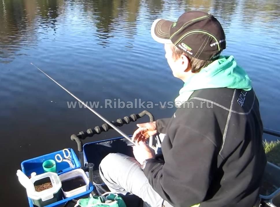 Советы опытных рыбаков по ловле вьюна