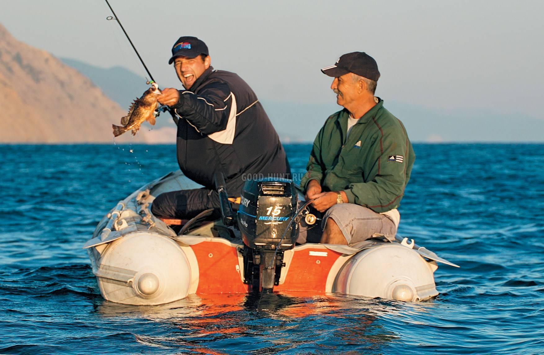 Ловля сазана на фидер:выбор монтажа, прикормки, тактика и техника рыбалки
