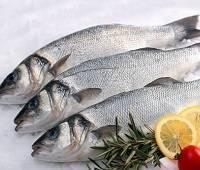 Сибас: калорийность на 100 грамм, состав, где водится