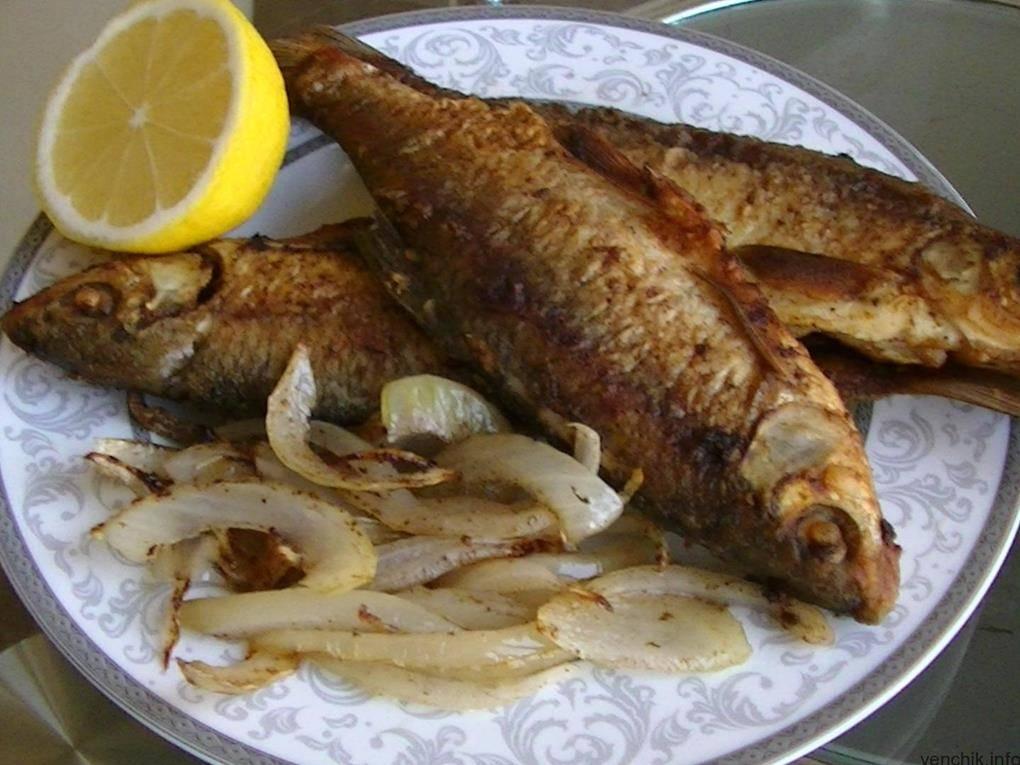Есть рыбу каждый день - результаты. топ 10 самых полезных и доступных сортов рыбы :: инфониак