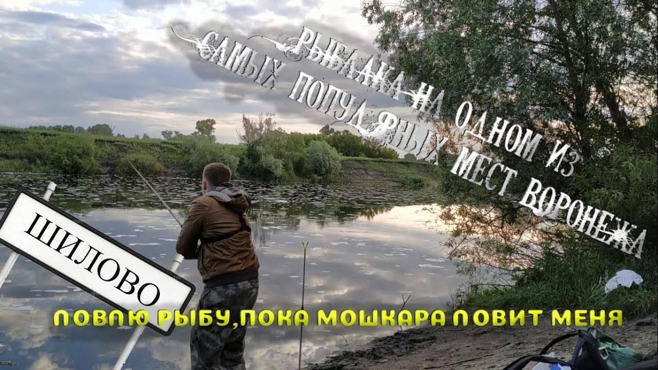 Рыбалка на дону в волгоградской области – куда отправиться? – суперулов – интернет-портал о рыбалке