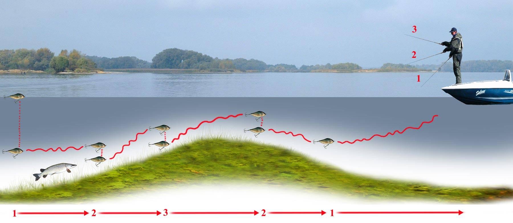 Ловля щуки на спиннинг с берега: весной, летом, осенью