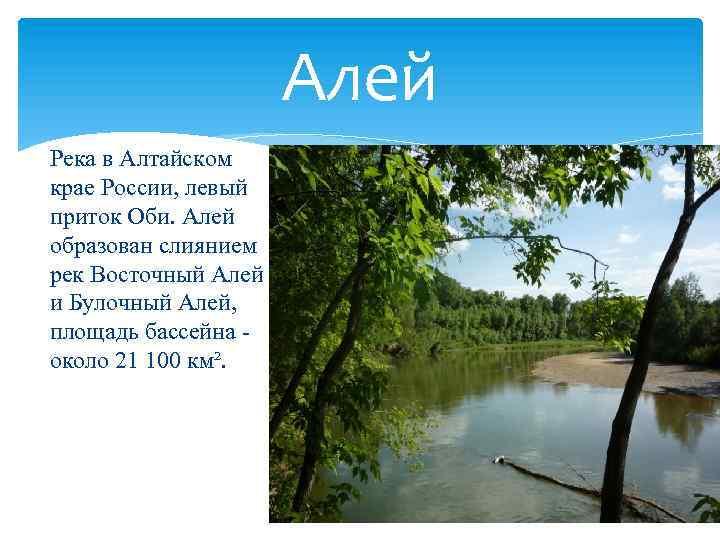 Река алей (алтайский край): карта, описание, особенности течения от истока до устья, история