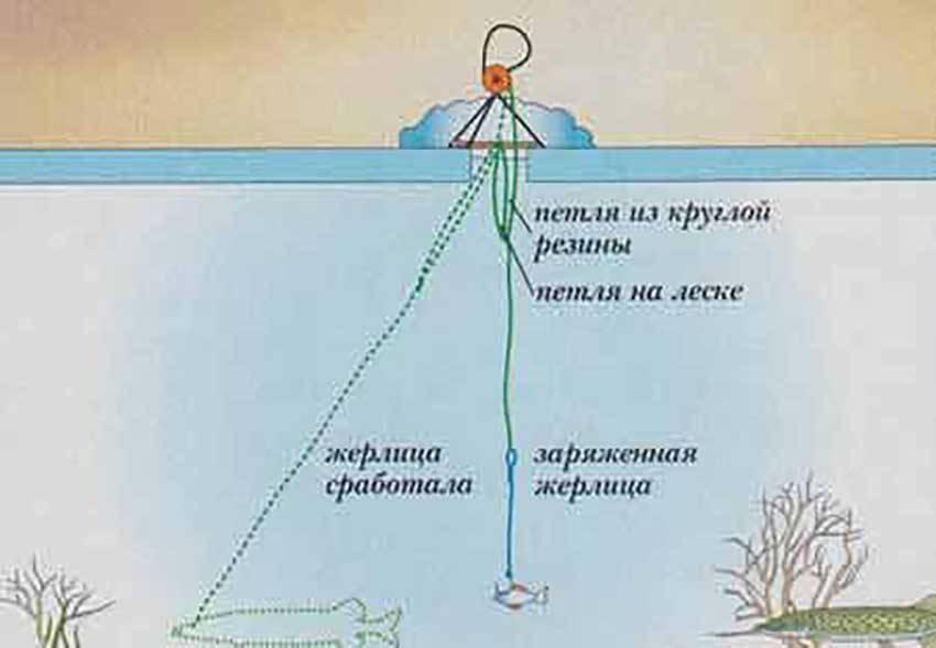 ✅ сколько крючков можно иметь на рыболовной снасти - рыбзон.рф