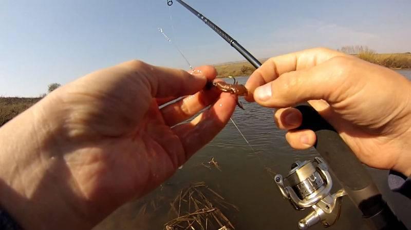 Ловля рыбы на кузнечика