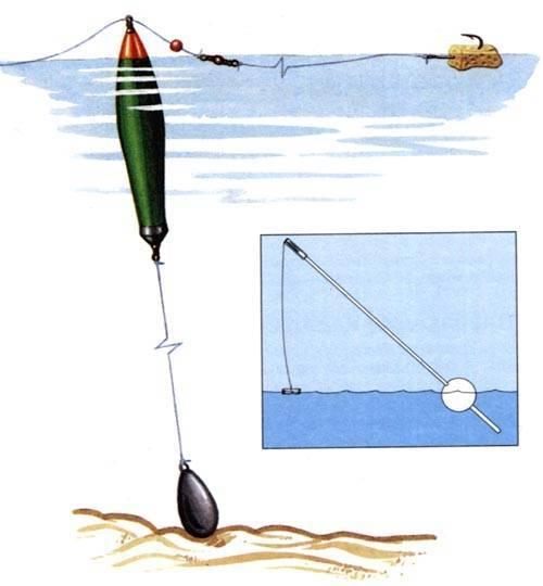 Как ловить голавля разными способами и на что он клюет