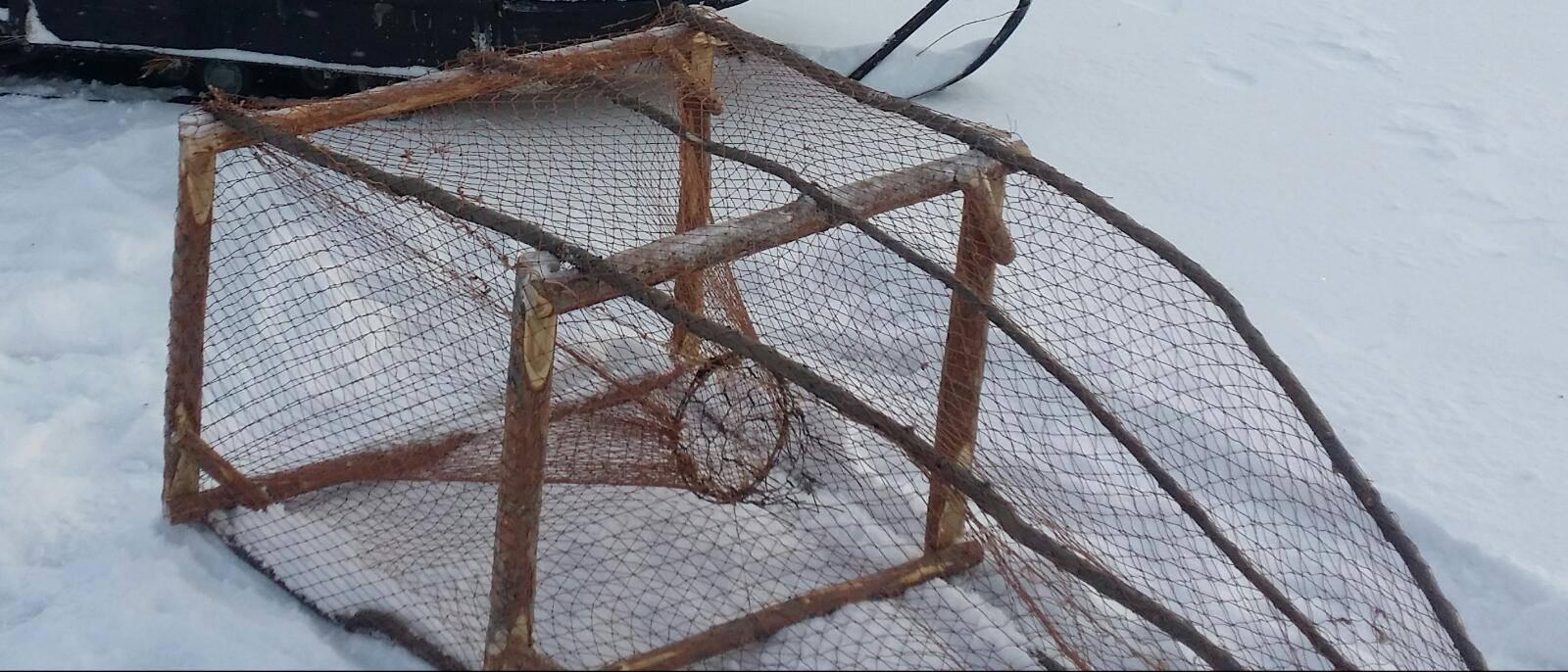Ловушки для рыбы: как сделать ловушку и поймать рыбу без удочки