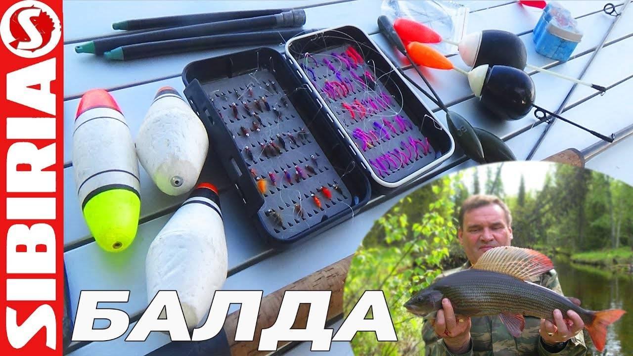 Рыбалка на хариуса в красноярске: видео, клев на енисее и зимняя ловля в красноярском крае на мухи