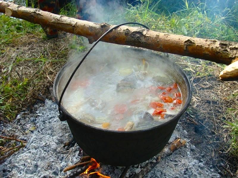 Уха из сома на костре. Рецепт ухи на костре – секреты русской кухни