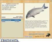 Буффало: фото, чем отличается от других рыб, от карася, в чём их разница и отличия