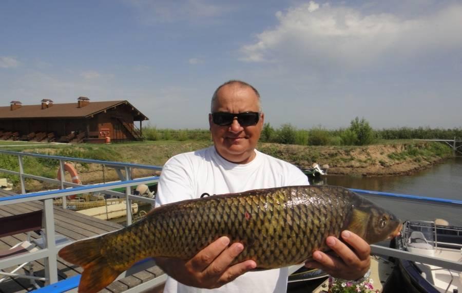 Рыболовная база «ершиха»