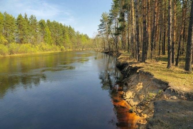 Рыбалка в августе (2 видео) | лучший календарь рыболова