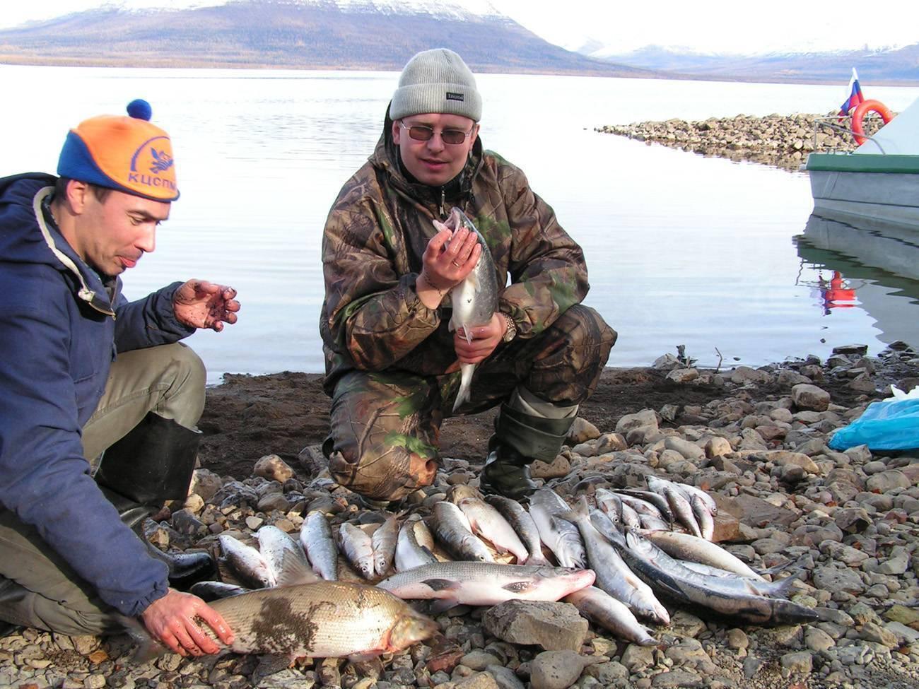 ✅ весенняя рыбалка на озере лама - fishingopt.su