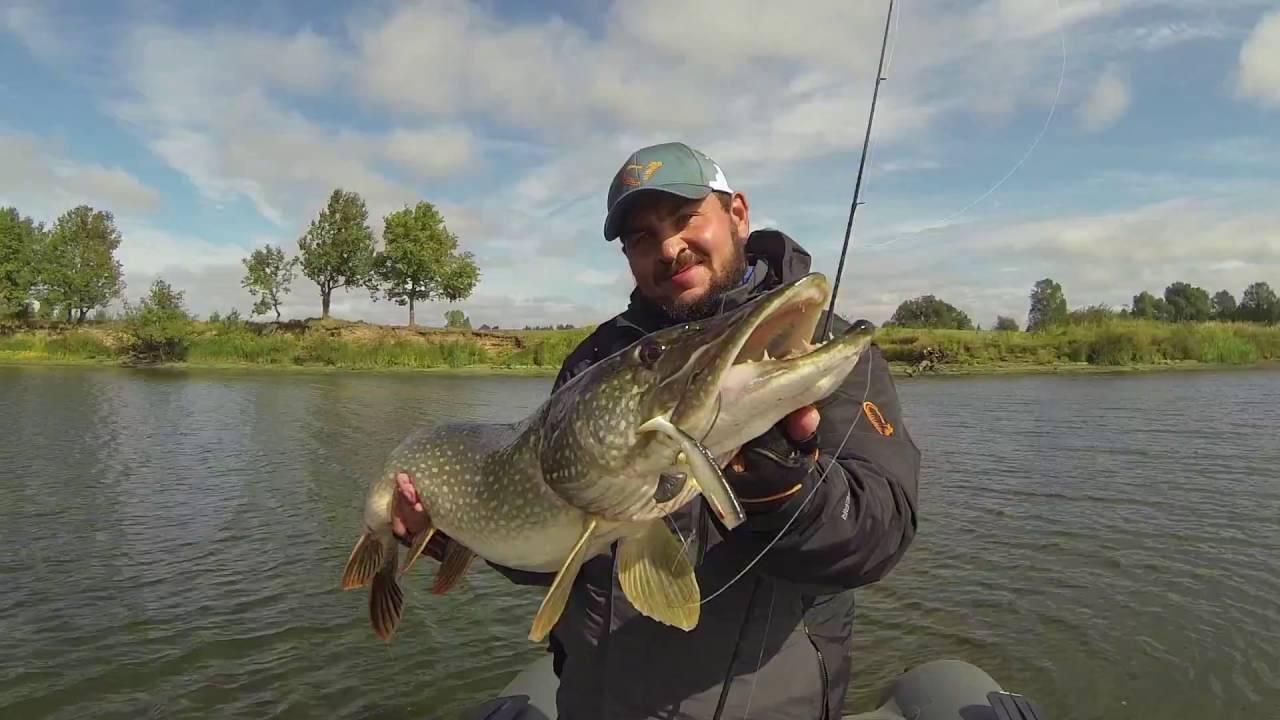 Телеканалы о рыбалке смотреть онлайн. топ 5 каналов о рыбалке. платная рыбалка в подмосковье