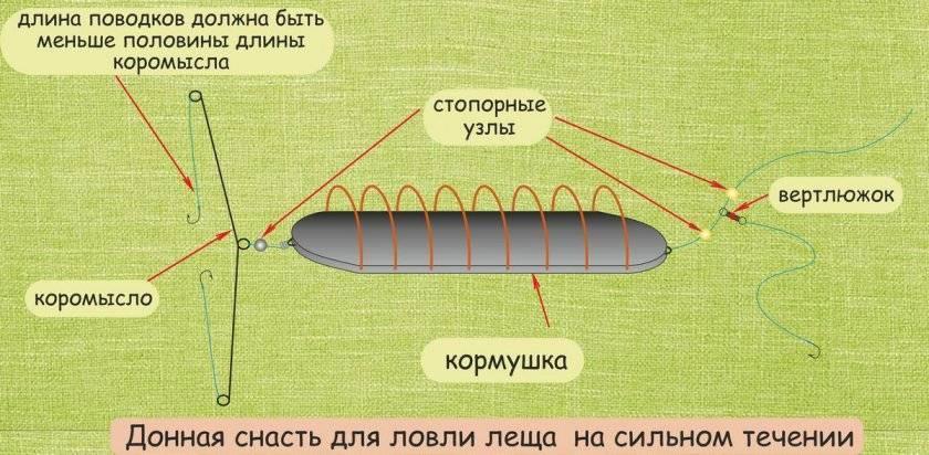 Ловля на бойлы — принципы ловли, техника, изготовление приманки и рекомендации экспертов по применению (75 фото)