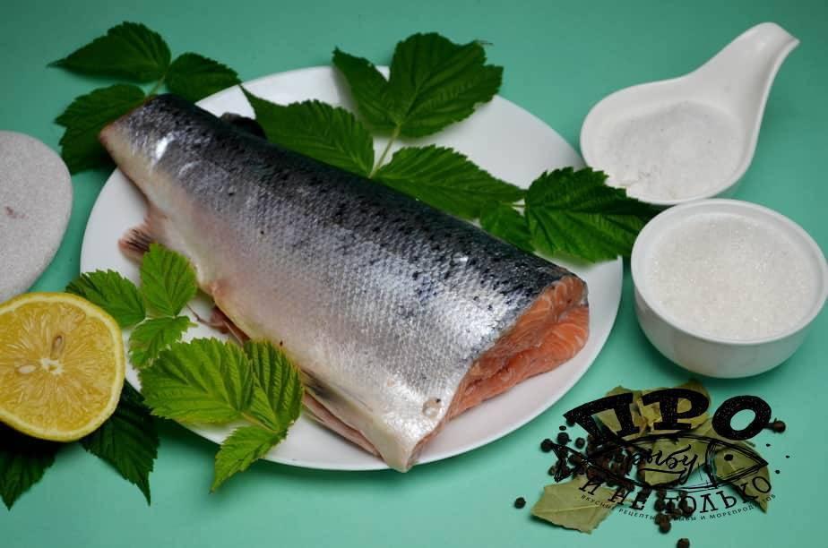 Как засолить красную рыбу вкусно и быстро   ? как быстро и вкусно засолить ? кулинарные рецепты